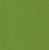C0243-10 - Tant Paper Single Color - Verde foglia